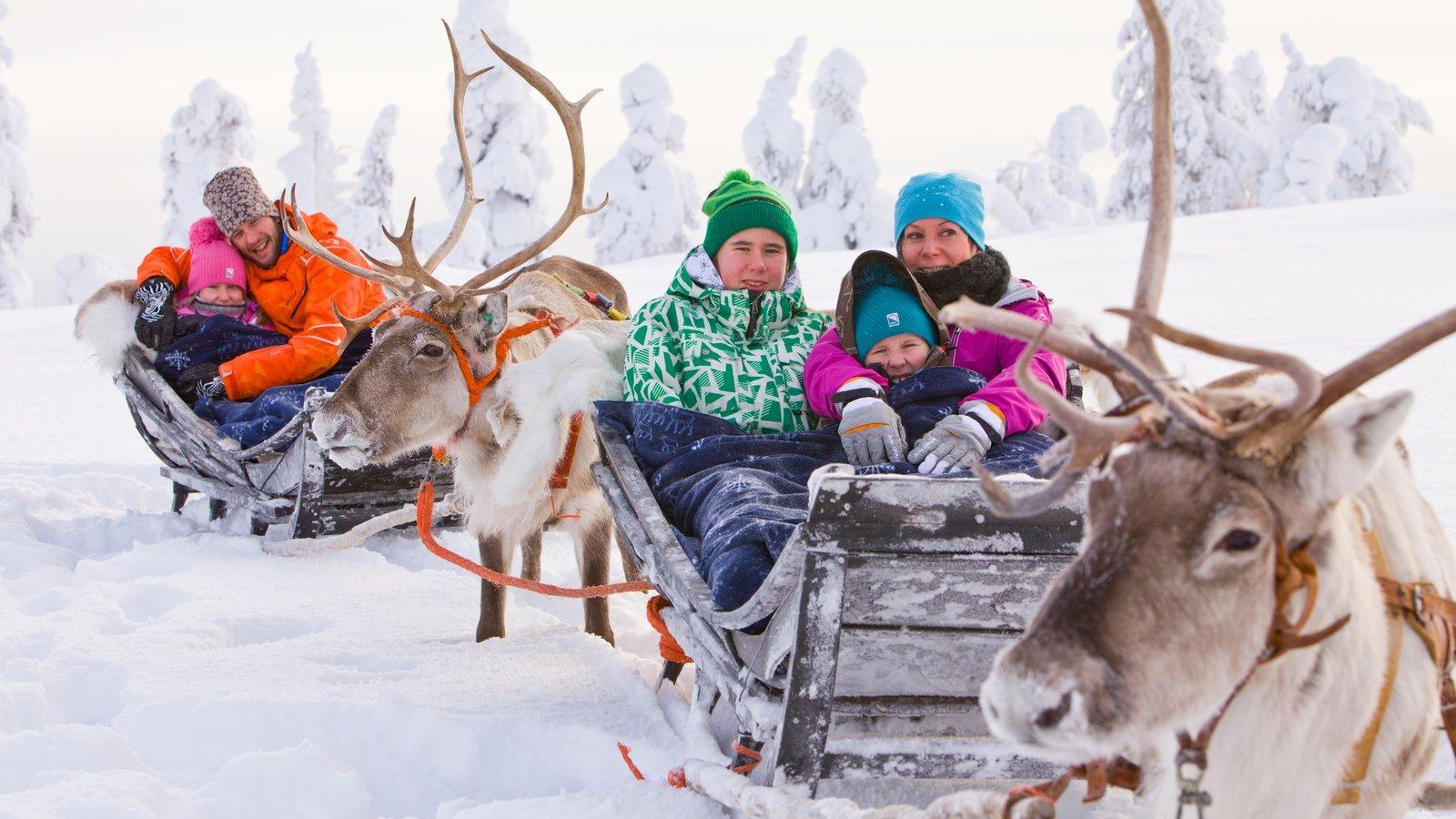 Новый год в финляндии отдых с детьми