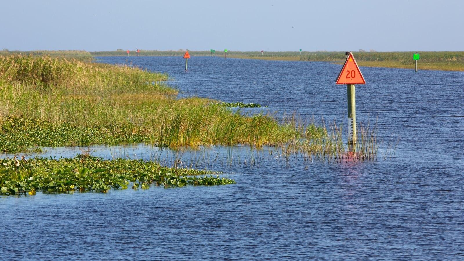 Okeechobee County, FL Land for sale 306 Listings LandWatch Pictures of lake okeechobee florida