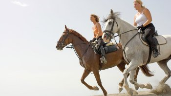 ,Palmeral de Marrakech,Paseo en caballo