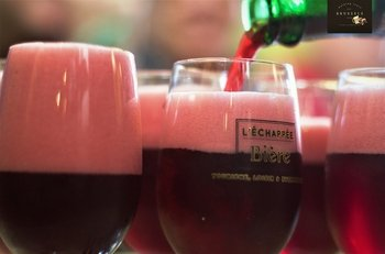 ,Tour de la cerveza,+ Aperitivo