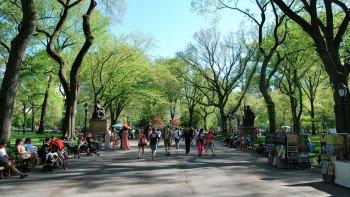 ,Tour Central Park,Central Park,A pie