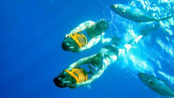 ,Buceo