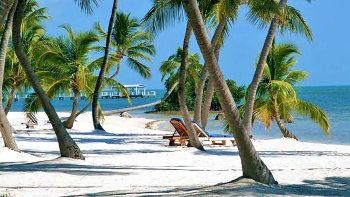 Salir de la ciudad,Excursiones de un día,Tour por Miami,Excursión a Cayo Hueso
