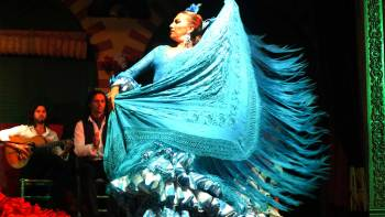 ,Espectáculo Flamenco