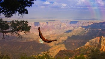 ,Grand Canyon,Limusina en las Vegas,Limousine in Las Vegas,West Rim,Gran Cañón