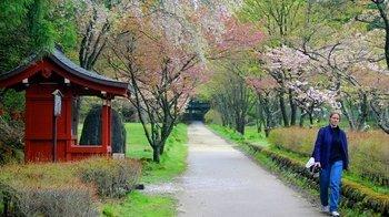 ,Excursión a Nikko
