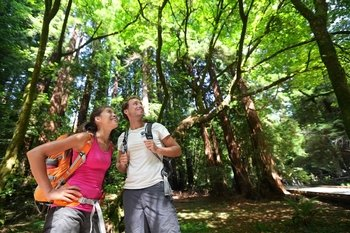 ,Excursión a Muir Woods,Excursion to Muir Woods