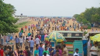 Marina Beach featuring general coastal views as well as a large group of people