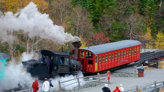 Mount Washington Cog Railway which includes railway items