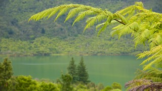 Lac Rotokakahi