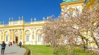 Wilanow Palace featuring heritage architecture and heritage elements