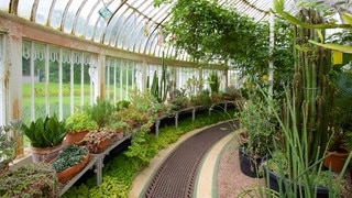 Belfast Botanic Gardens featuring heritage elements, interior views and a garden
