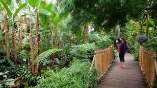 สวนควีนเอลิซาเบธ