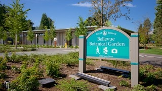 Bellevue Botanical Garden showing a garden and signage