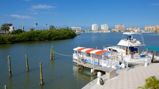 Clearwater Marine Aquarium showing a marina and general coastal views