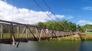 Swinging Bridge which includes a suspension bridge or treetop walkway