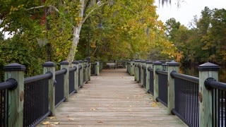 Conway Riverwalk (parque y área recreativa)