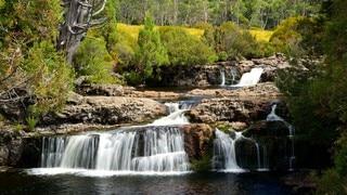 Enchanted Nature Walk