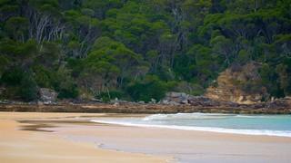 Aslings Beach