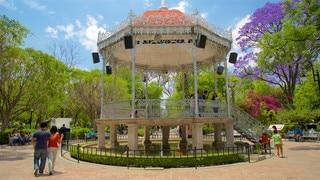 Jardin de San Marcos