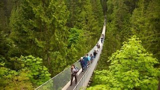 สะพาน Capilano Suspension Bridge