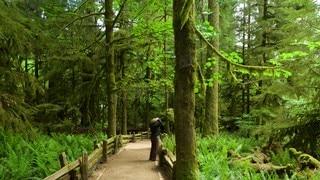 MacMillan Provincial Park