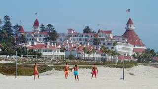 Coronado Beach featuring tropical scenes and a sandy beach as well as a small group of people
