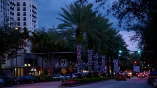 Miracle Mile featuring street scenes, a sunset and night scenes