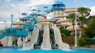 Wet \'n Wild featuring a waterpark, rides and a pool