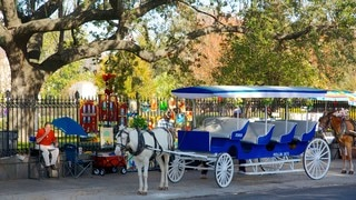 Jackson Square which includes vehicle touring and street scenes
