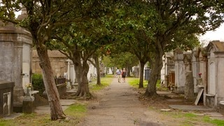 Lafayette Cemetery which includes a memorial and a cemetery