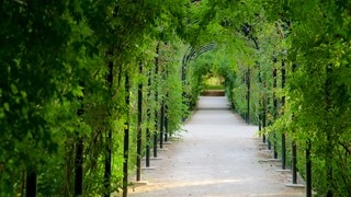 Primo de Rivera Park