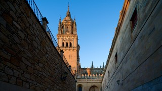 Old Cathedral of Salamanca
