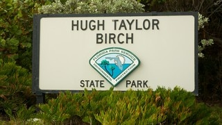 Parque estatal Hugh Taylor Birch