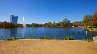 Hermann Park showing skyline, a lake or waterhole and a garden
