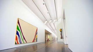 Menil Collection which includes interior views