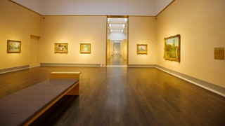 Houston Museum of Fine Arts featuring interior views
