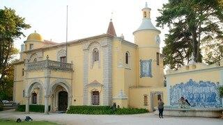 Condes de Castro Guimaraes Museum