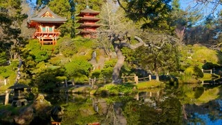 Japanese Tea Garden featuring landscape views, forests and a park