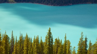 Peyto Lake featuring a lake or waterhole and landscape views