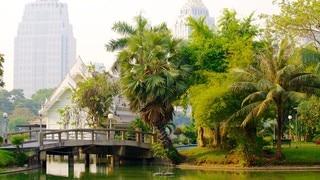 Lumpini Park showing a garden, a city and a bridge
