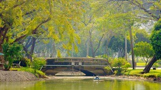 Lumpini Park featuring general coastal views, a lake or waterhole and a park