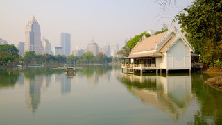 Lumpini Park showing landscape views, a city and boating