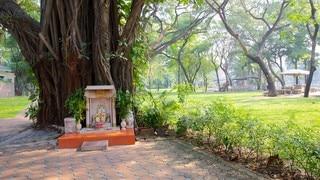 Lumpini Park showing a garden