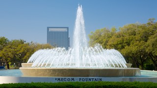 Hermann Park featuring a park, a city, and a fountain