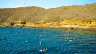 Molokini showing swimming, rugged coastline and landscape views