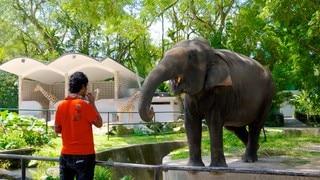 สวนสัตว์แห่งชาติ