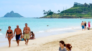 Kailua Beach which includes tropical scenes and a sandy beach as well as a small group of people