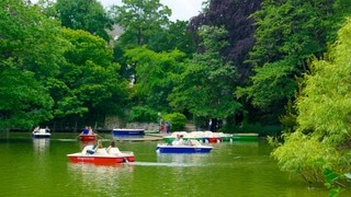 Palmengarten which includes boating, tropical scenes and a lake or waterhole