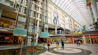 Toronto Eaton Centre which includes shopping, interior views and cbd